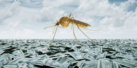 Mosquito_on_sea_of_cash_1200x600.jpg